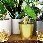 Mini Plant Pot Royals