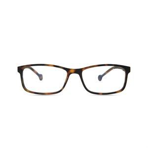 Reading / Screen Glasses Tamesis Tortoise